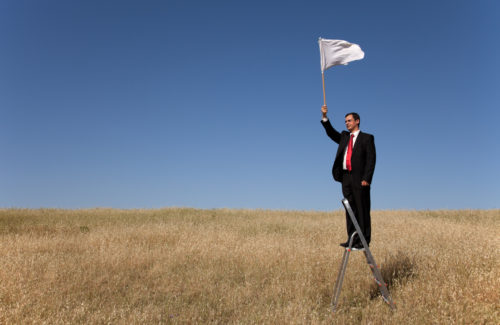 FINDING YOUR WHITE FLAGS